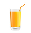 Orange Juice in Glass vector image vector image