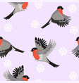 seamless pattern with bullfinches birds vector image vector image