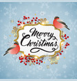 christmas background with bullfinch birds vector image
