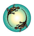 salamanders green circle pattern vector image