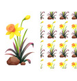 seamless background design with yellow daffodil vector image