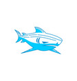 shark animal logo design isolated concept template vector image vector image