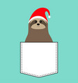 sloth sitting in pocket red santa claus hat vector image