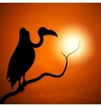 The silhouette of a vulture sunset vector image vector image