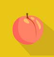 peach flat icon vector image