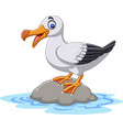 cartoon cute bird albatross standing on a rock vector image vector image