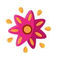 cinco de mayo flower decoration ornament vector image