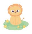 cute little lion cartoon animal adorable