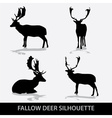 Fallow deer silhouette icons eps10 vector image