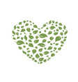 heart symbol in green leaves eco bio vector image