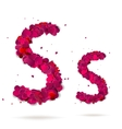 Letter s made from hearts Love alphabet vector image