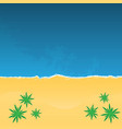 tropical beach with palm trees top view vector image
