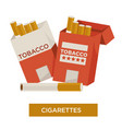 cigarette in pack tobacco product isolated icon vector image