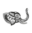 Ethnic ornamented elephant vector image
