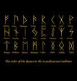 golden rune metal runes vector image vector image