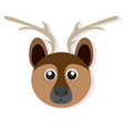 isolated deer face vector image vector image
