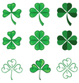 leaves of clover vector image vector image