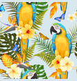 seamless macaw and flowers vector image vector image