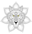 tiger entangle face on mandala vector image