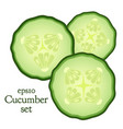 set of cucumber and slices made in flat style vector image