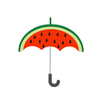 Big watermelon slice cut with seed Umbrella shape