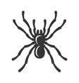black spider silhouette icon on white background vector image vector image