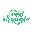 eco organic icon hand drawn calligpaphy isolated vector image vector image