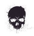 hand drawn black skull with splash effects vector image