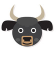 isolated buffalo face vector image