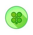 shamrock clover vector image vector image
