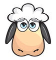 sheep glava resize vector image