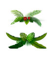 tropical leaves background vector image