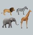 wild african animals lion elephant zebra giraffe vector image vector image