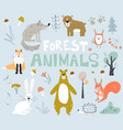 woodland forest animals cute bear fox hedgehogs vector image
