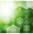 Abstract Polygonal space Green Hexagonal vector image vector image