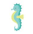 cute cartoon sea horse isolated seahorse on a vector image vector image