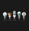 evolution set light bulb vector image vector image