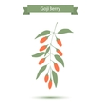 Goji berries on a branch vector image