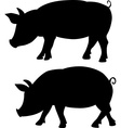pig silhouette - black vector image vector image
