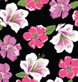 pretty lilies vector image vector image