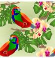 Seamless texture tropical bird