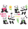 Set of six funny pandas with bamboo