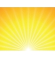 sun on yellow background vector image vector image