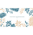 tropical background with exotic leaves jugle vector image