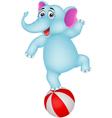 elephant cartoon on ball vector image