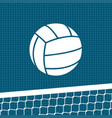 flat volleyball background vector image