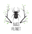 Big Black Beetle Insect and Nature Symbol vector image vector image