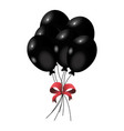 party decoration balloons vector image