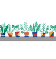 potted plants seamless border repeating vector image vector image