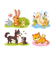 set with pets cartoon style collection of vector image vector image